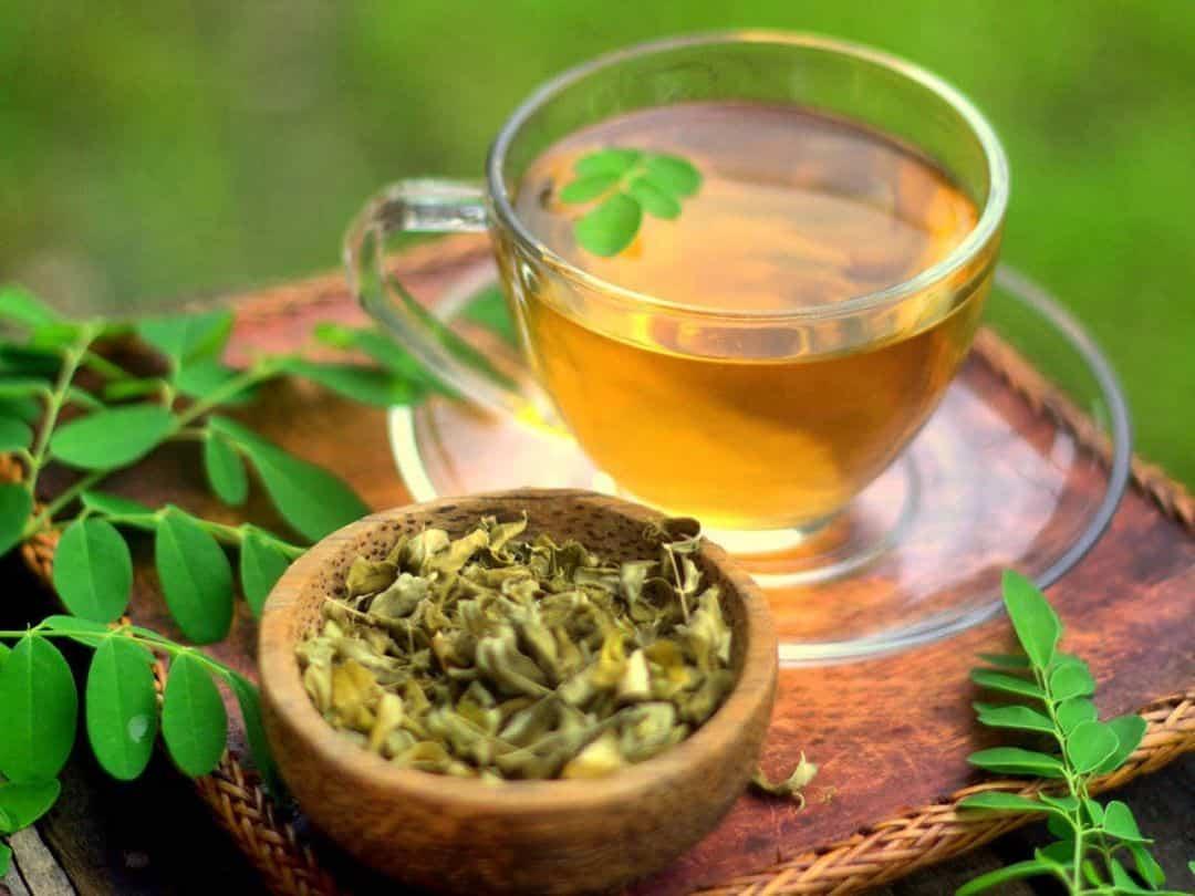 Receta de Té de Moringa
